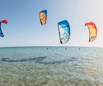 Тур выходного дня на берегу Черного моря